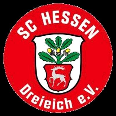 Regionalliga Logo Pin Badge Bundesliga ETSV Weiche Felnsburg 1930 e.V.